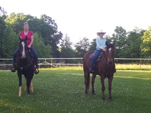 blog-horses
